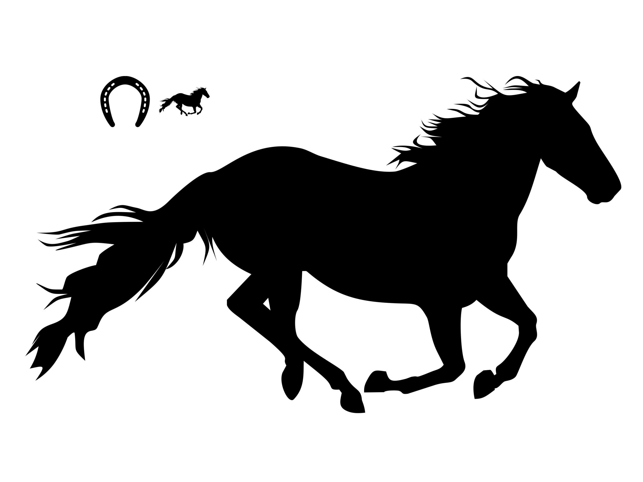 Kone. Veľké - steny samolepky. Kôň. Nálepka XXXL