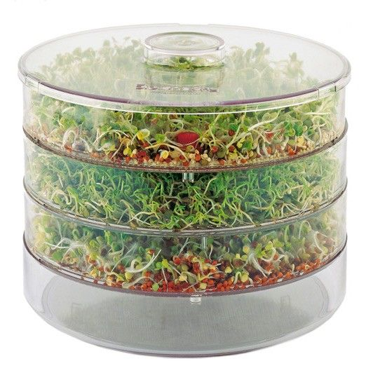 Ящик для проращивания горшок для проращивания