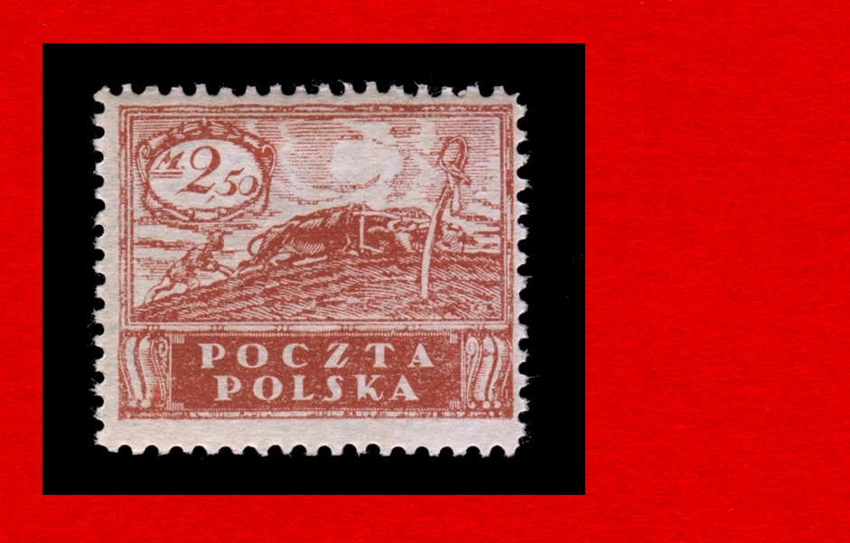 95 B Zn CZ ** 1919 Značková edícia