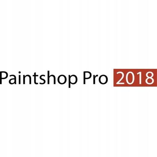 Corel Paintshop Pro 2018 Polska Wersja 2019 2020