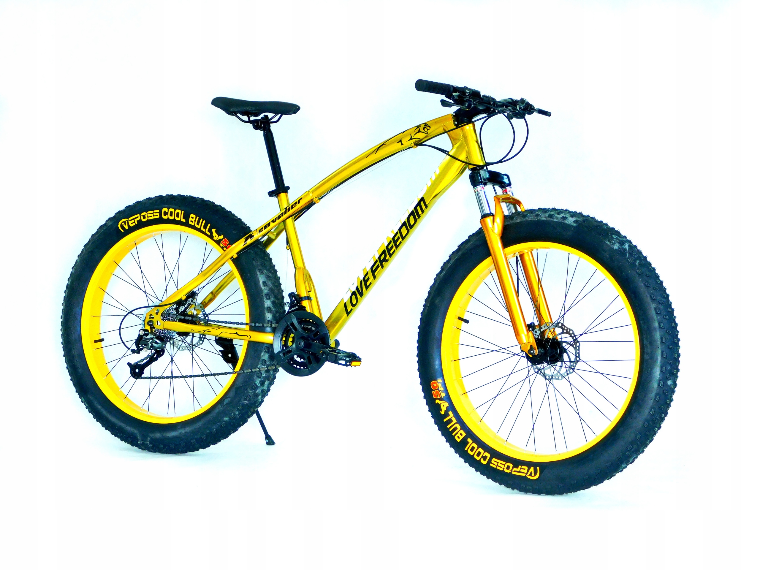 Fat Bike Rower