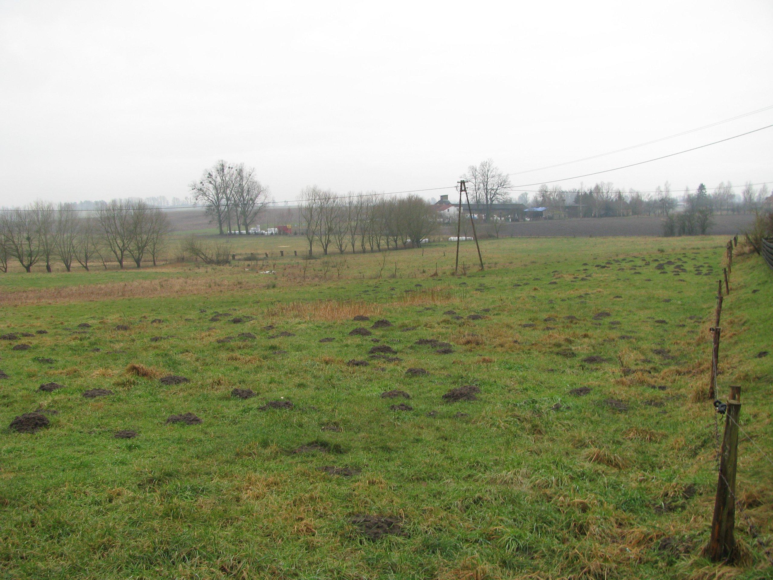 Działka rolna, Smolajny, Dobre Miasto, 1.2900 ha