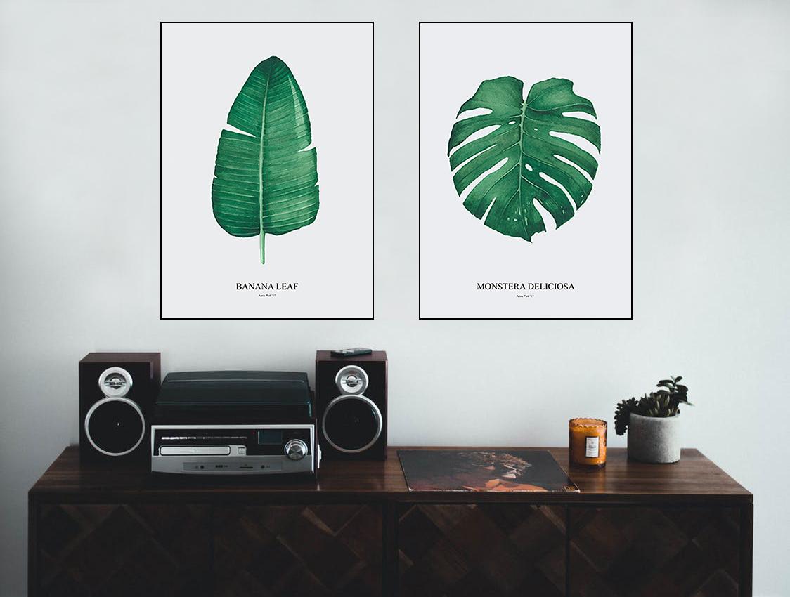Plakaty Na ścianę Zestaw Monstera I Bananowiec 7249690997