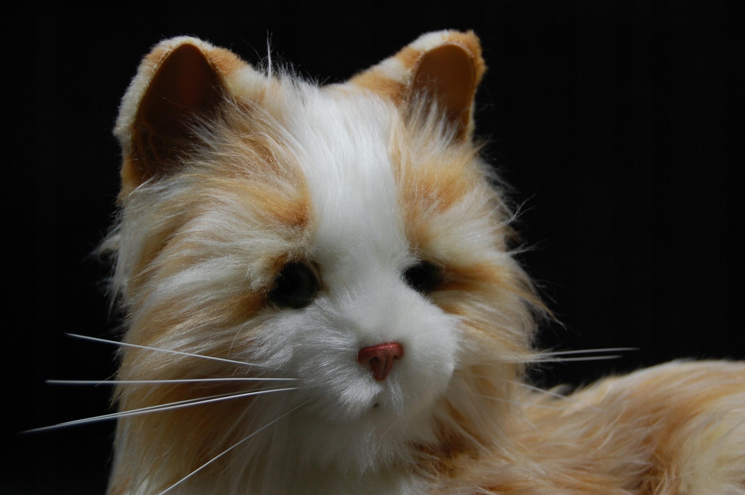 Interaktywny Kot Hasbro Joy for all companion pets