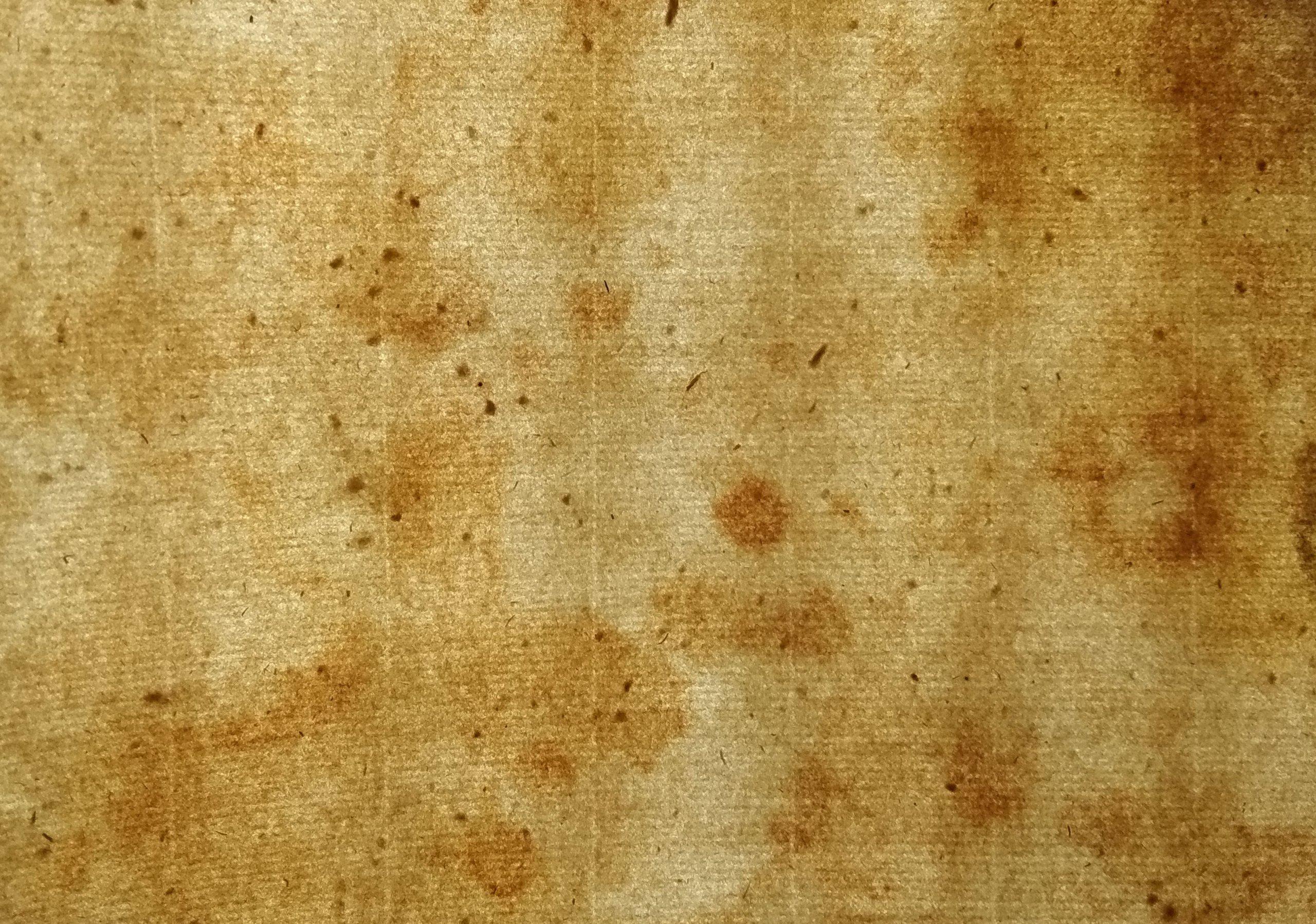 Stary papier czerpany XVII wiek 266