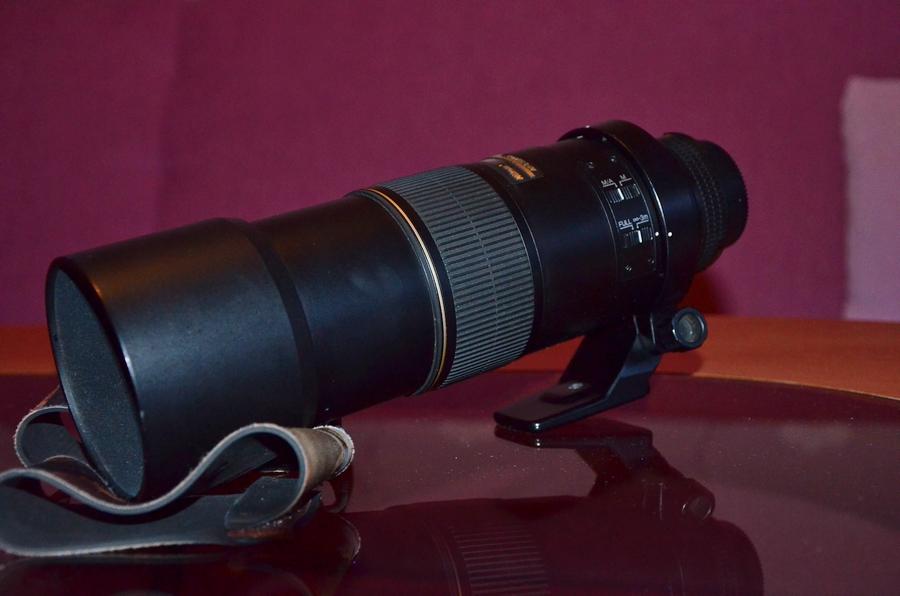 Nikkor AF-S 300/4 D IF-ED + TC 1/4