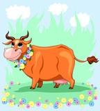 8 Krów RP, 2 byczki oraz 2 Cieliczki Objęte progra