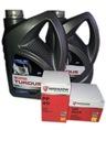 Olej Turdus 10L+filtr PP49+f. paliwa MF3 235 255