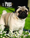 BrownTrout Publishers Pugs 2017 Weekly Desk Diary