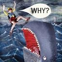 WHY ?: MUMPS, ETC. [CD]