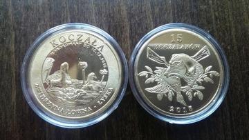 Лысуха -15 koczalaków - жрать Охота доставка товаров из Польши и Allegro на русском