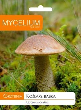 Мицелий Козларц Бабка Лесные грибы в саду