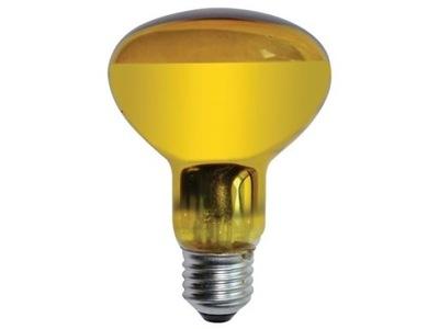 Żarówka kolorowa 60W E27 żółta