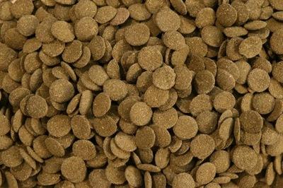 GREEN WAFERS таблетки спирулина ALGAE 500 мл 250 г