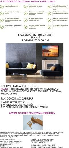 c15bb0267112ca Plakat, plakaty 500 unikatowych wzorów - 70x50 cm Tematyka architektura  czarno-białe edukacyjne film