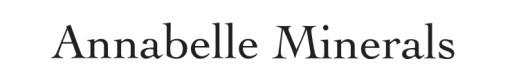 Annabelle Minerals ROZŚWIETLACZ ROYAL GLOW 4g 7950279023